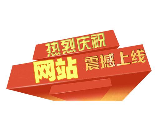 热烈庆祝XXXX人力资源管理有限公司官方网站正式上线!